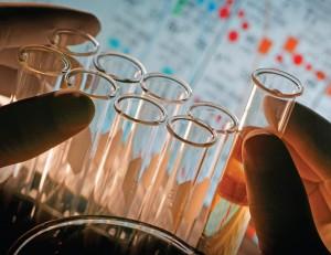 test pavillion til biotech